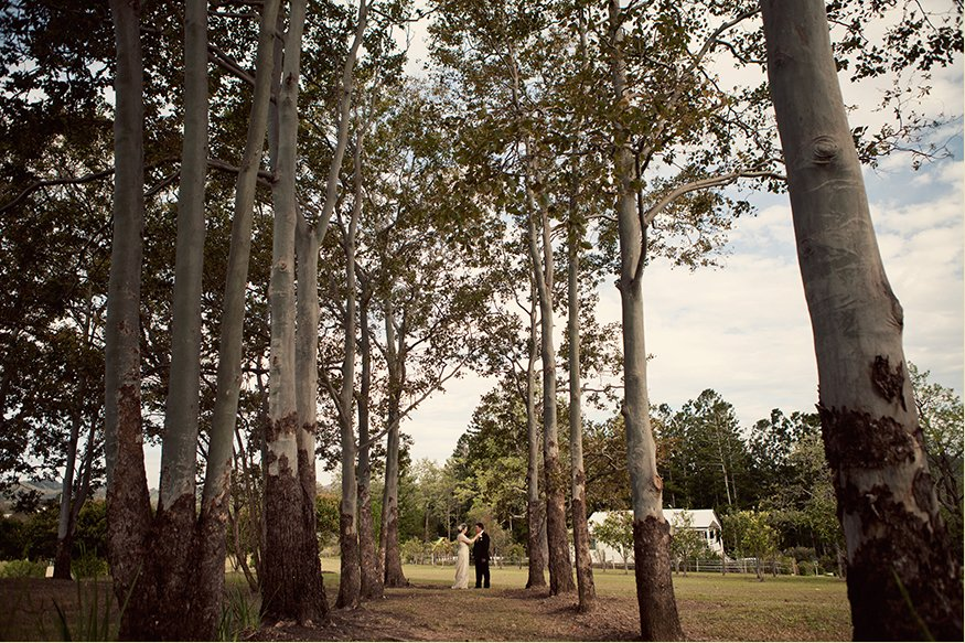 Brisbane Wedding Phoographer Blog collage-1321838273635