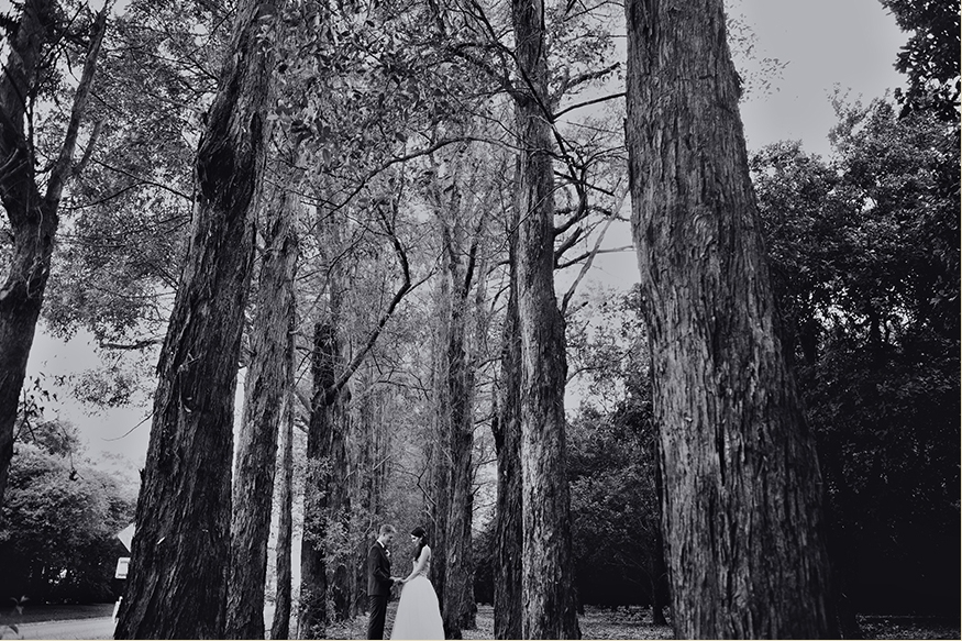 Brisbane Wedding Phoographer Blog collage-1327379620121