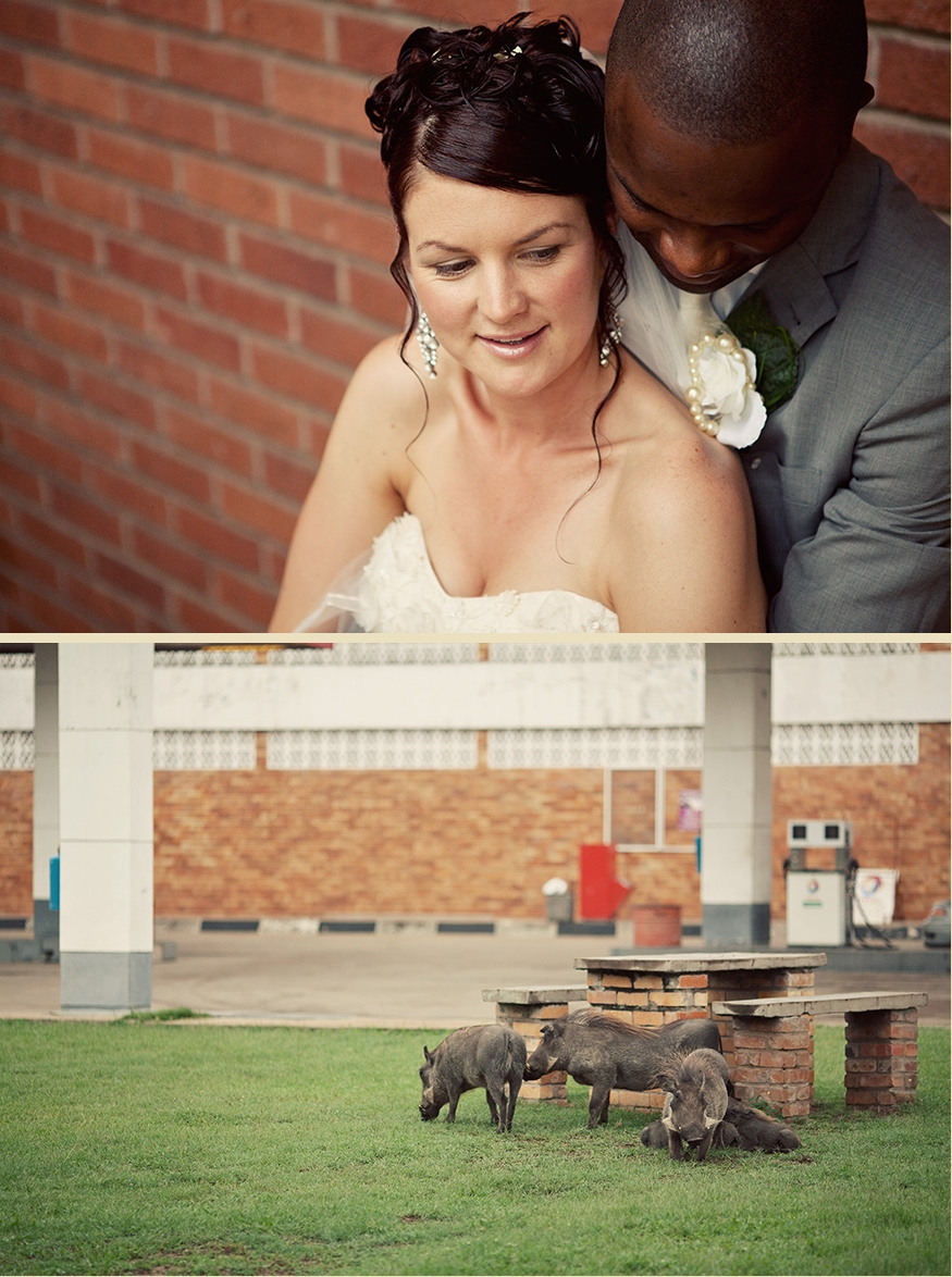 Brisbane Wedding Phoographer Blog-collage-1329187459423