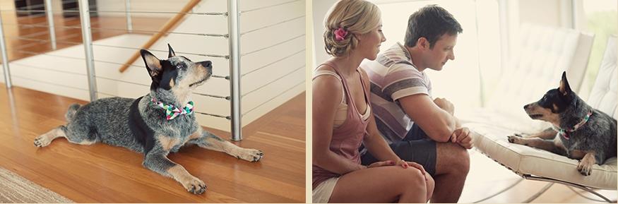 Brisbane Wedding Phoographer Blog collage-1337304393413