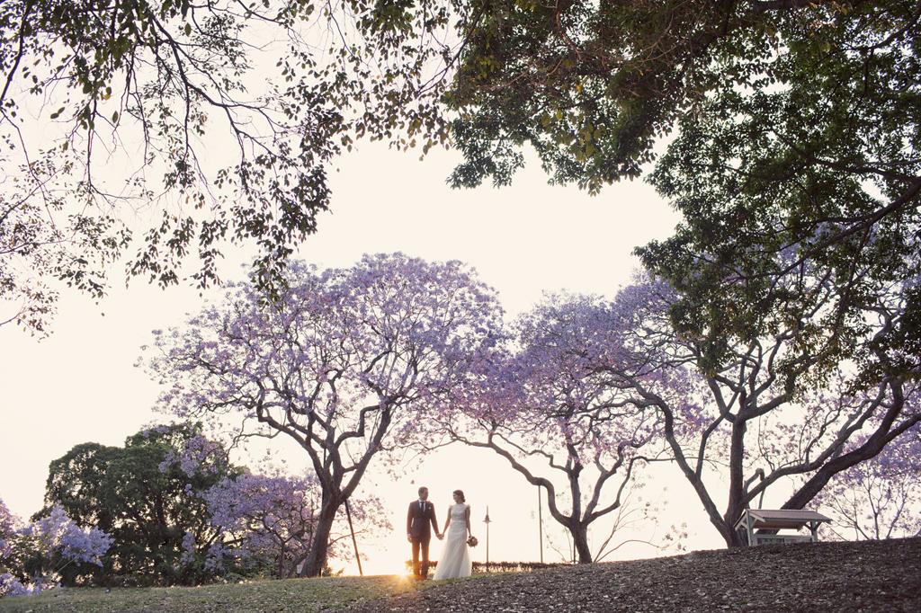 Jacaranda Wedding