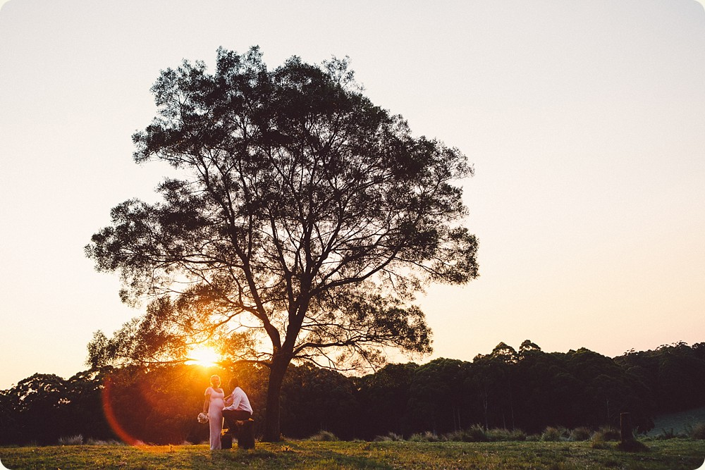 Sunset Wedding Photos at Spicers Peak Lodge