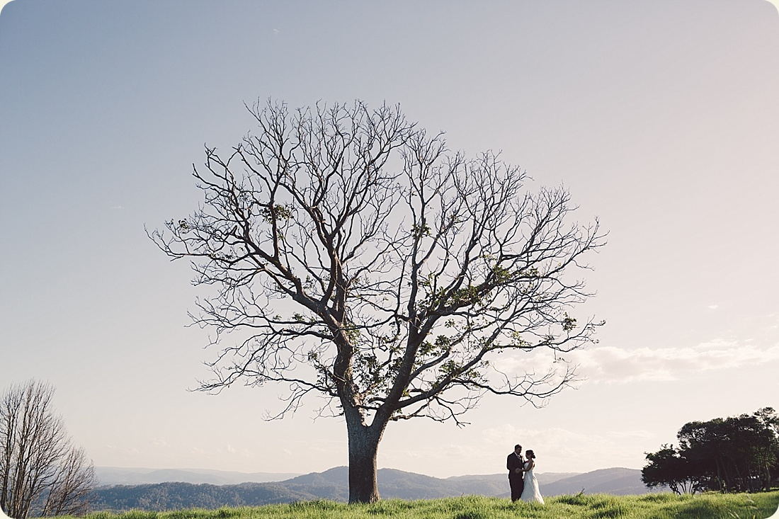 0040-maleny-wedding-maleny-tree.JPG