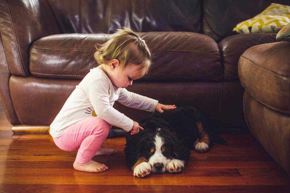 child-puppy.JPG