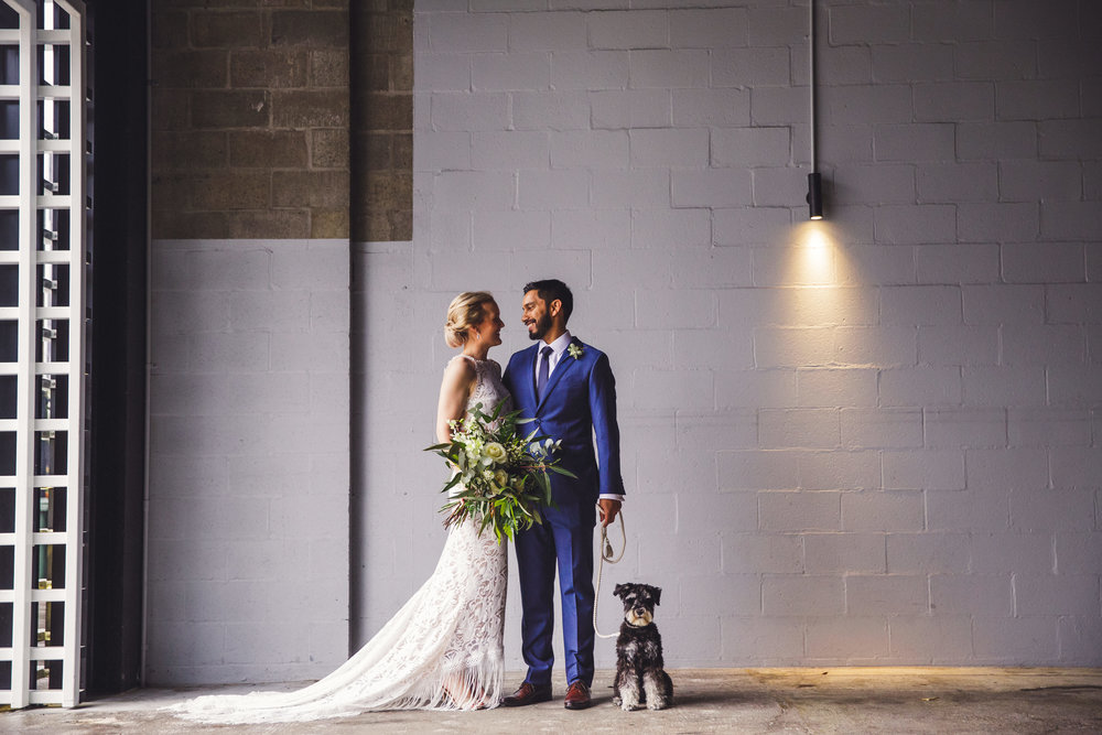 Bride and Groom with puppy at The Joinery in Brisbane