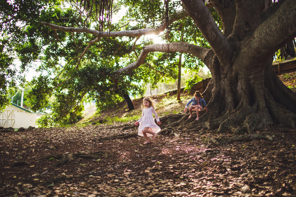 Children playing under big tree in Brisbane