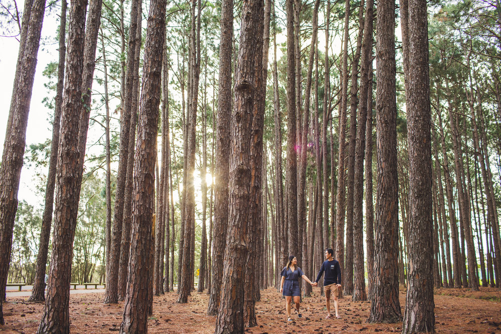 Engaged couple walking through forest