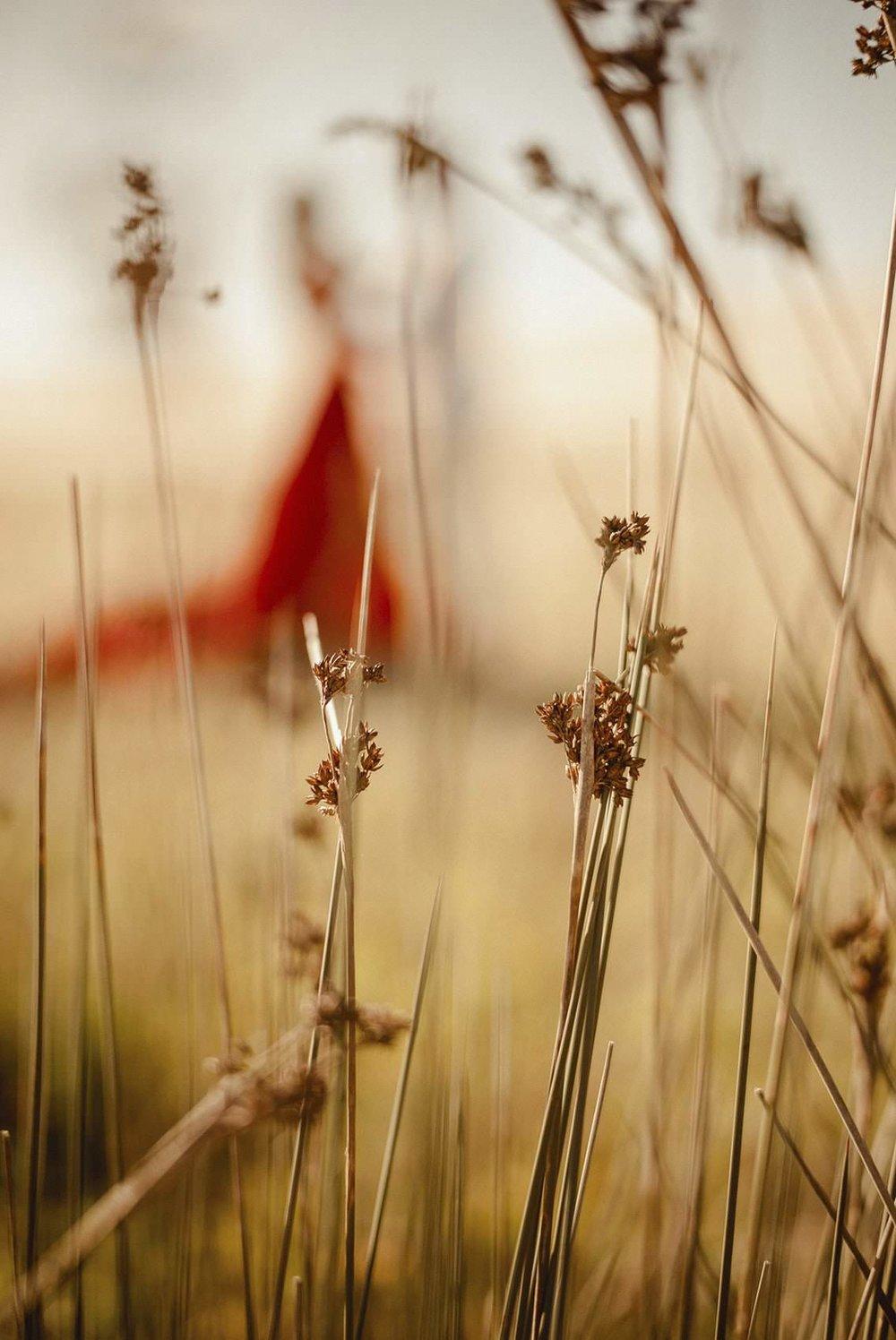 51_rosa-andrew_2_small_landscape.jpg