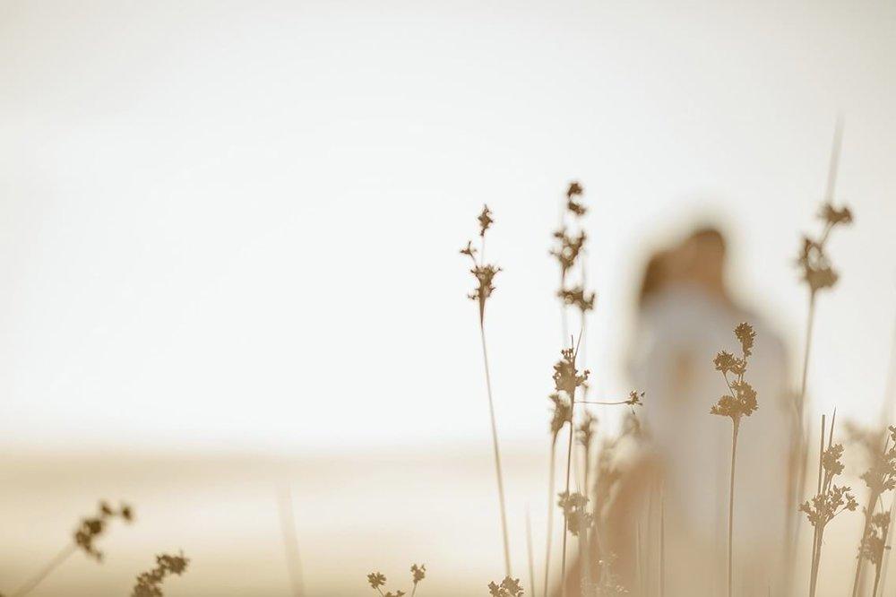51_rosa-andrew_6_small_landscape.jpg