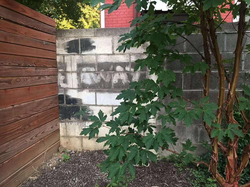The mysterious wall in Jia's backyard