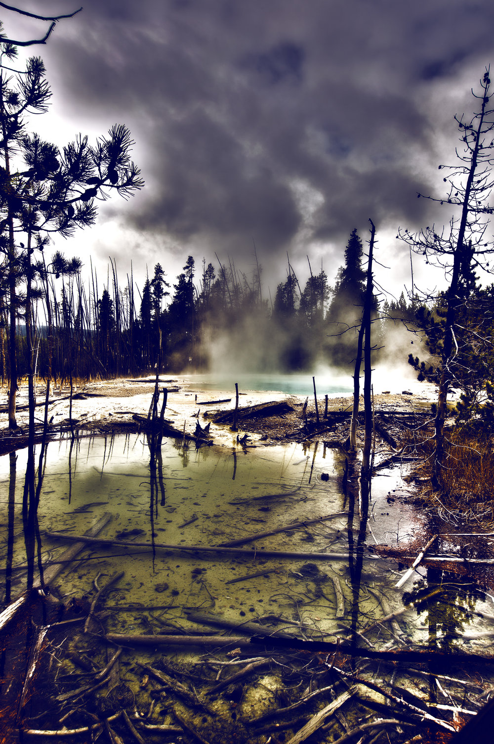 2016 - Yellowstone National Park