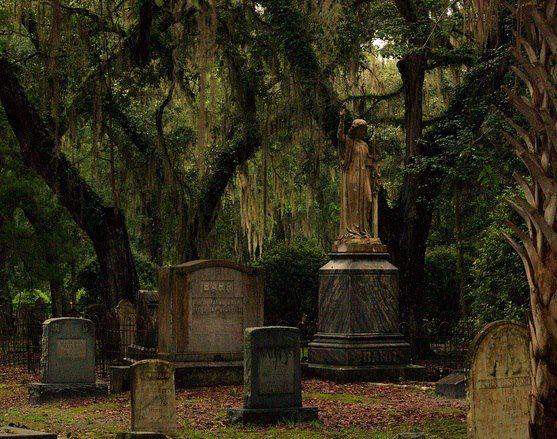 8f24b3e1313a3f74f99215fec8249859--old-cemeteries-graveyards.jpg