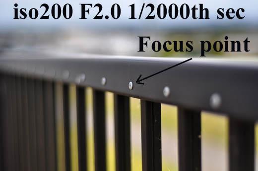 F2.0DSC_2005.jpg