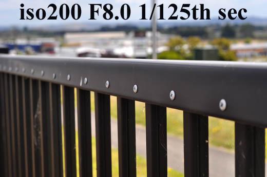 F8.0DSC_2009.jpg
