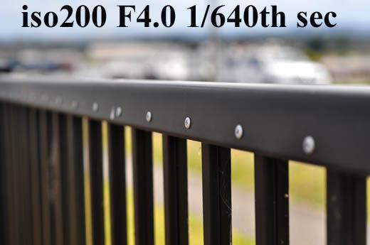 F4.0DSC_2007.jpg
