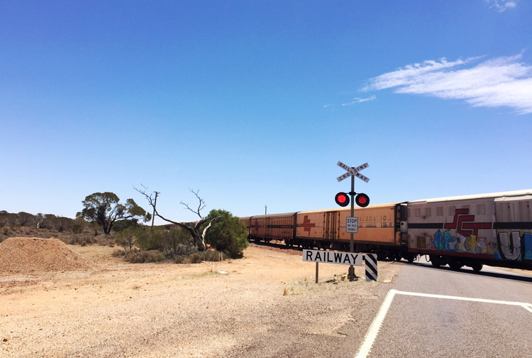Train-Crossing-Northern-South-Australia.jpg