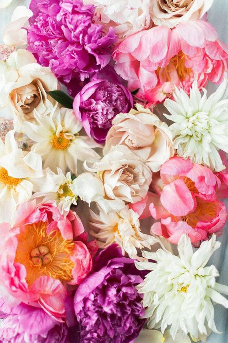 Pink-Inspiration-Feb-4.jpg