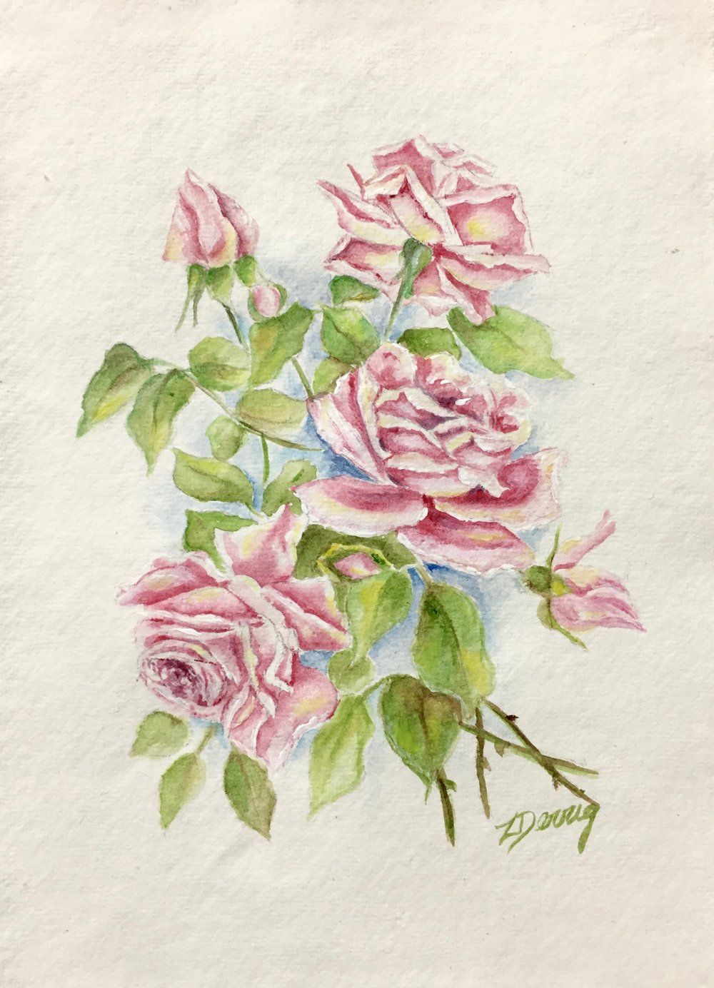 SOLD  Pink Roses - Watercolour