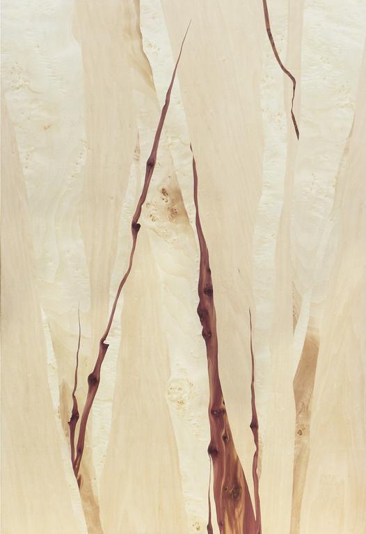 2016 | 1,16 x 1,80m | Tilleul, peuplier, calocèdre