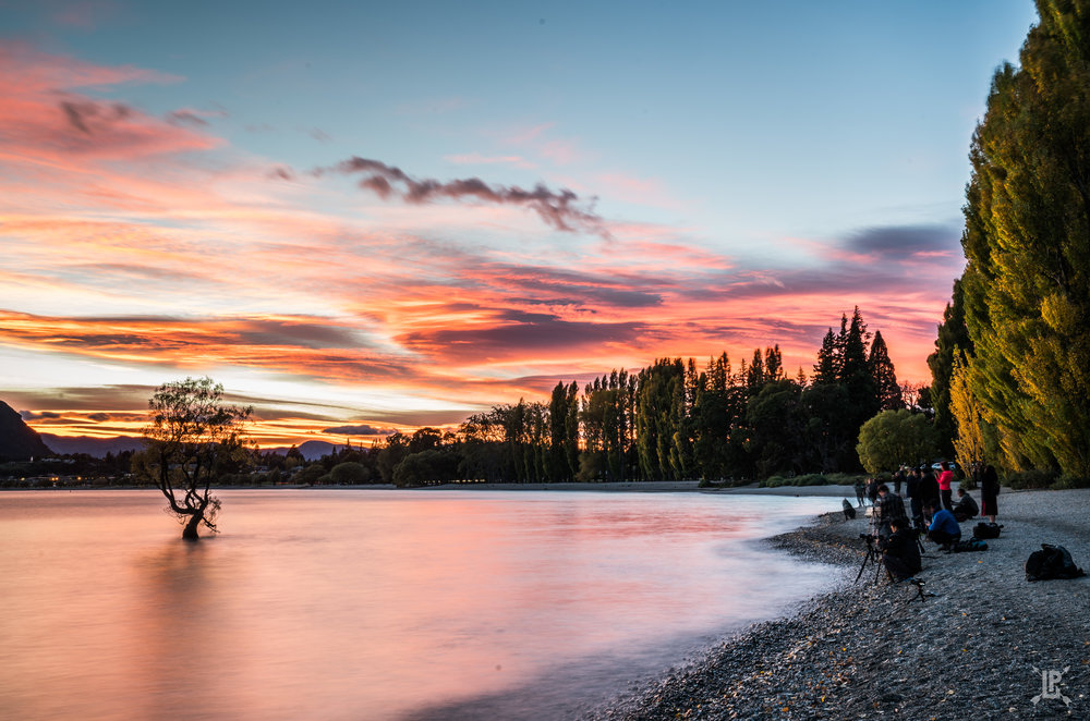 The Wanaka Tree Paparazzi. Note: I didn't add any saturation to this photo! I raised the shadows so you could see the photographers but this was the color of the sky. It was unreal.   Sony A7RIII ,  24-70mm  | f/16, 6 sec ISO 100