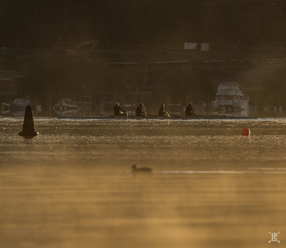 Boat crew racing a duck