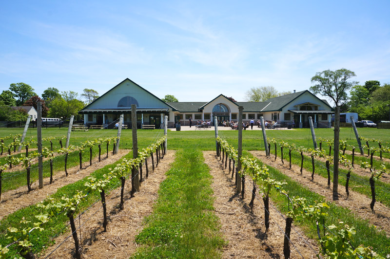 Duck Walk Vineyard - Buy 1 tasting, get one complimentary