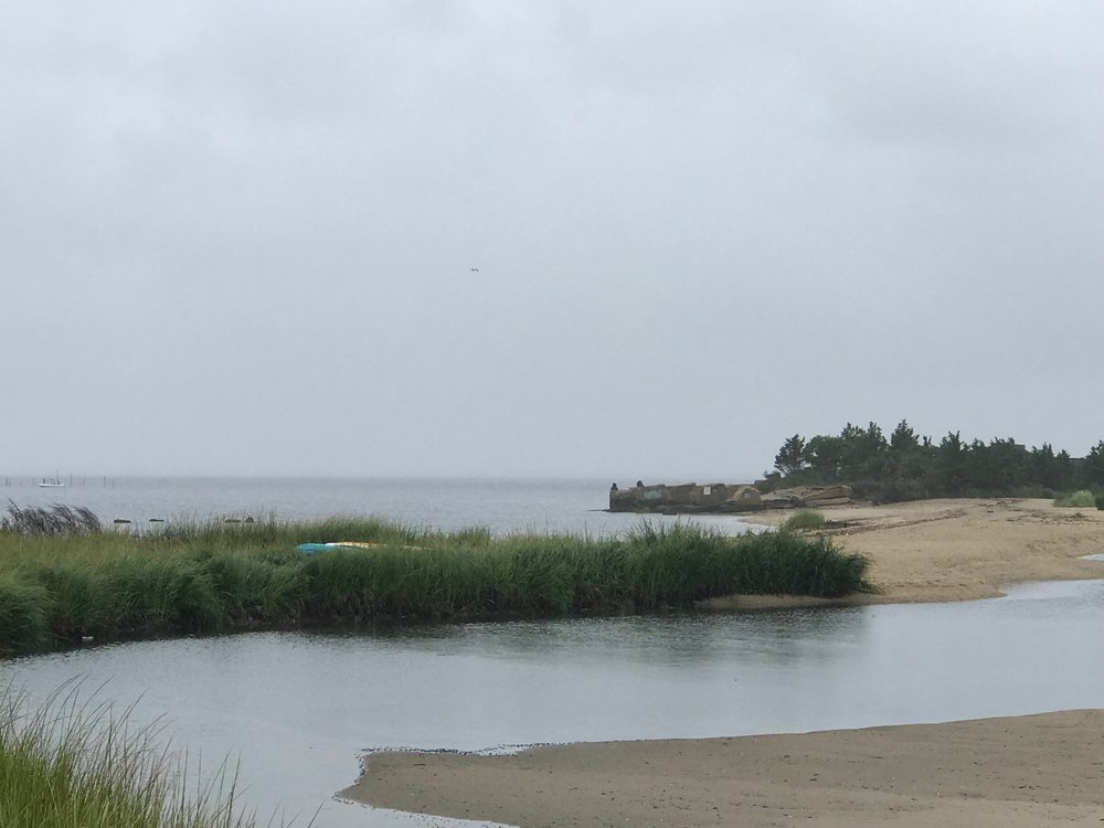 The kayaks spent the night tucked in grasses on the beach!