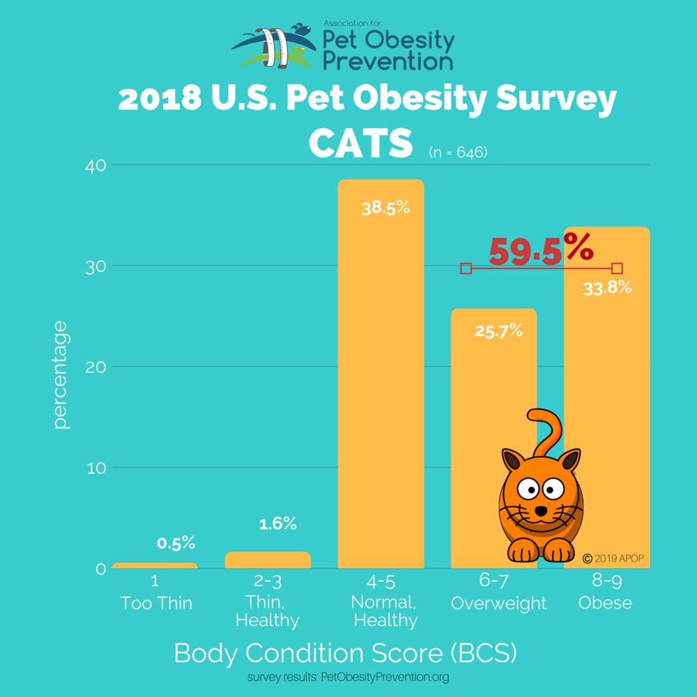 2018 APOP Cat Graphs 2160px.png