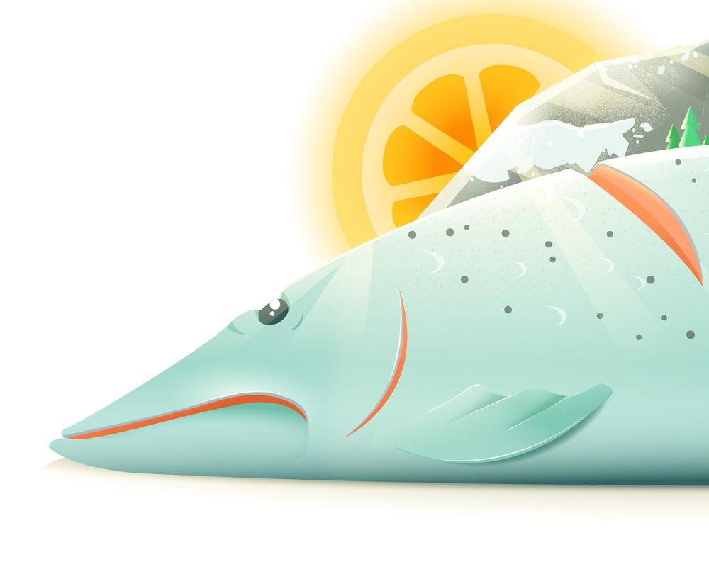 Detail der Food Illustration eines Lachs von Elisabeth Deim