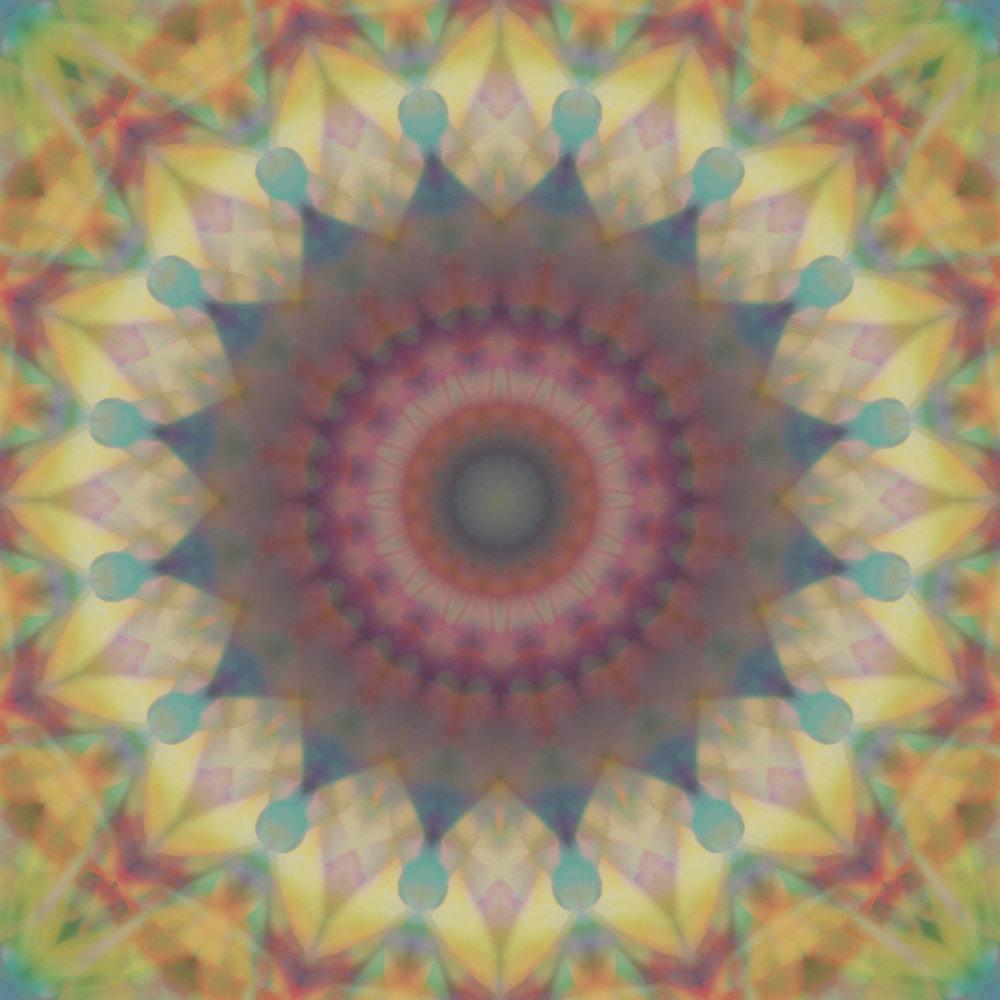 RHUBARB - Click to Watch