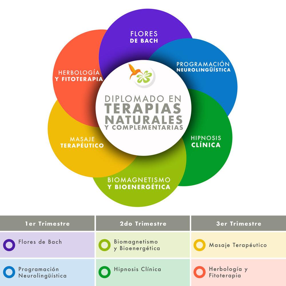 Diplomado en Terapias Naturales.jpg