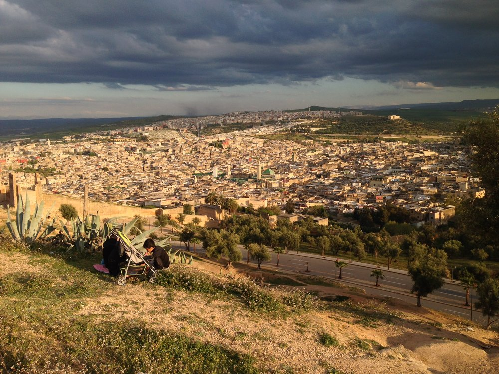 The Medina of Fez from the Merinids