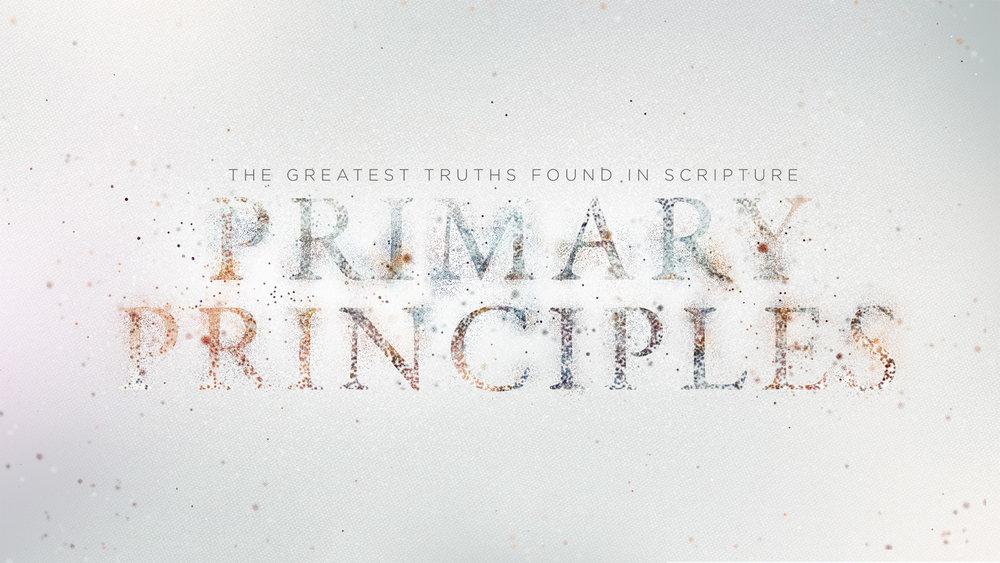 Primary-Principles-WIDE_title1.jpg