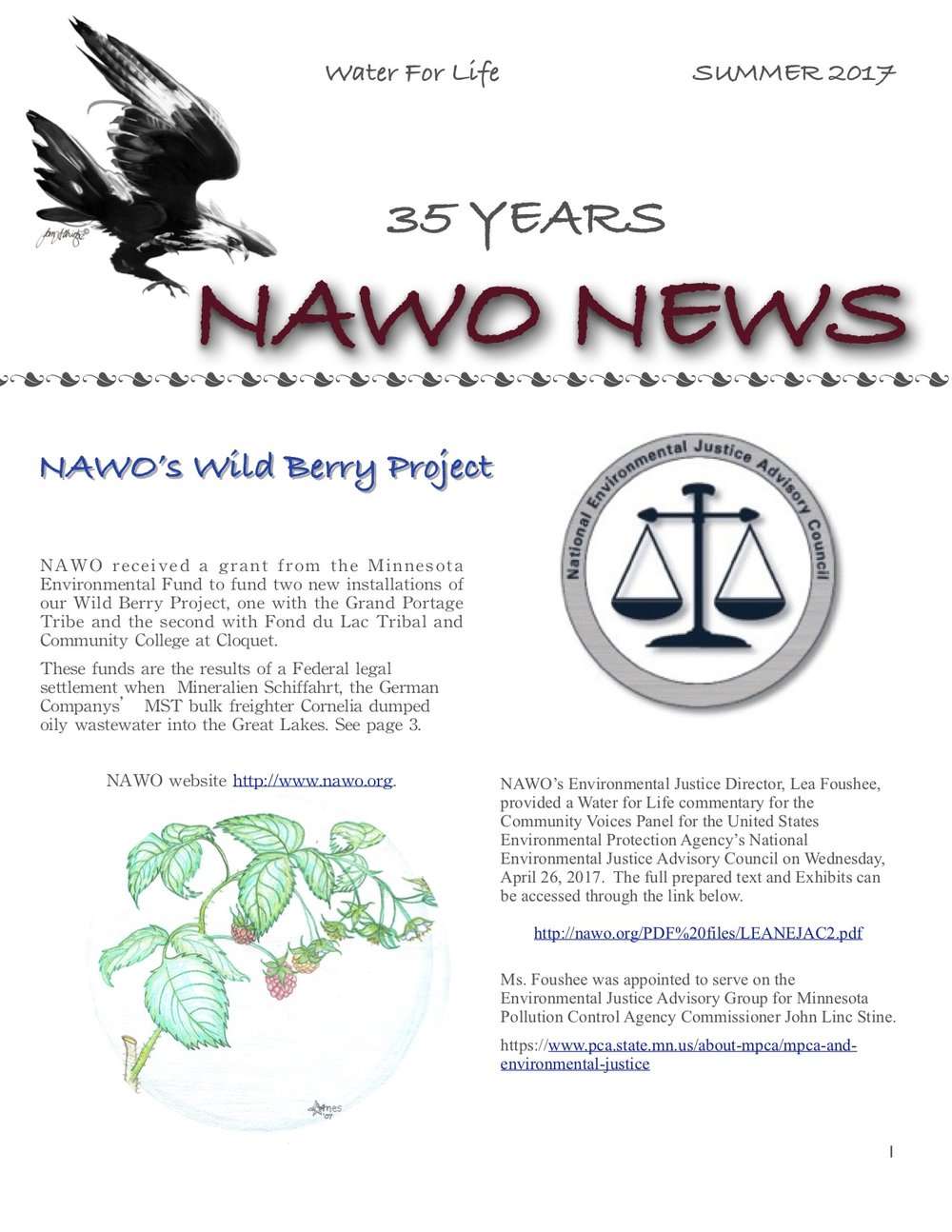 NAWO NEWS/2017