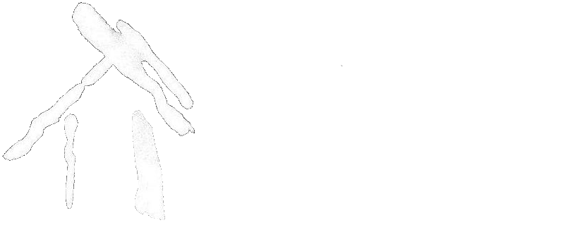 Designs Northwest Architects