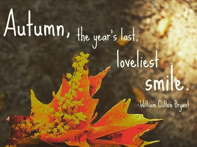 We love autumn. And we promise you'll leave with a beautiful smile after your massage! #massage #massagetherapy #goaldigger #fall #autumn🍁 #autumn