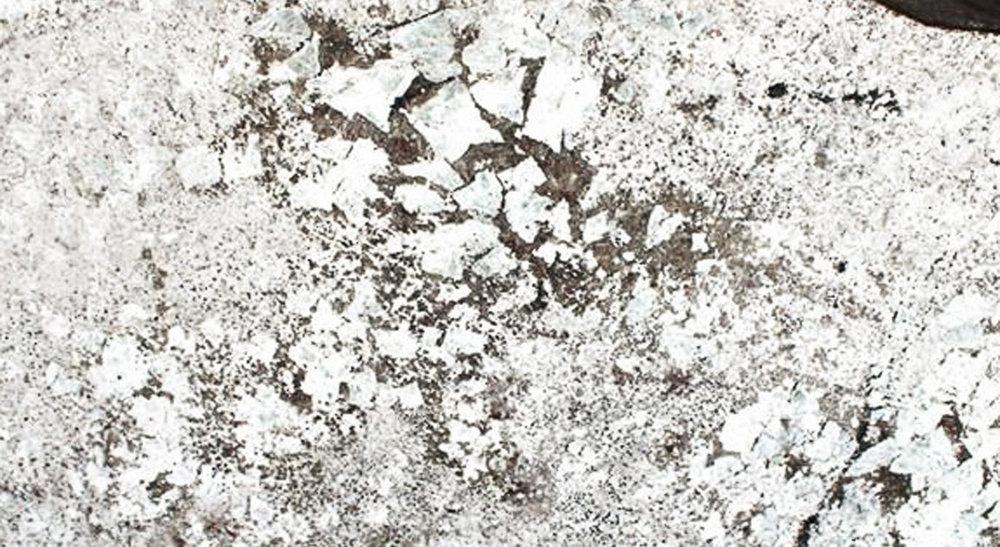 White-Galaxy