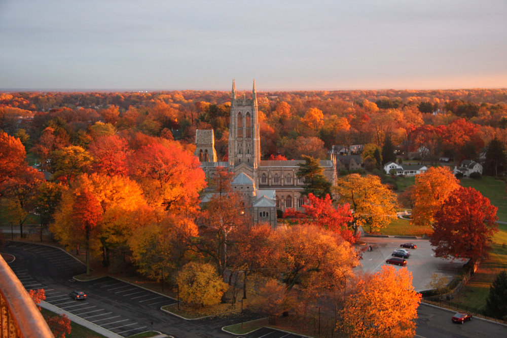 Bryn Athyn Cathedral, from Glencairn Museum's tower