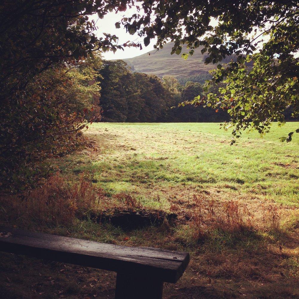 Autumn on the Falkland Estate in Fife.