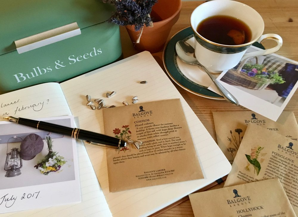 Choosing seeds and making plans for the garden whilst drinking tea in a china cup.