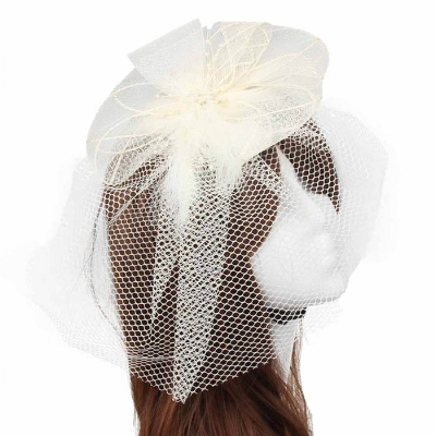 Ivory Birdcage Veil