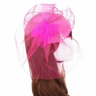 Pink Birdcage Veil