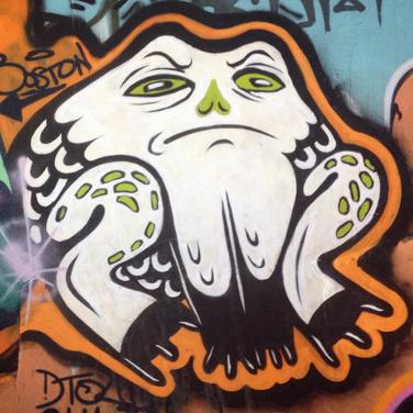 frog-thumb.jpg