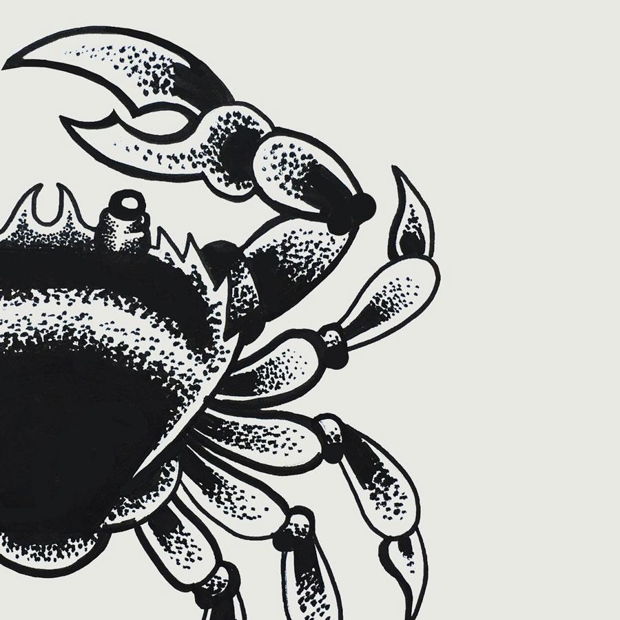 crab-thumb.jpg