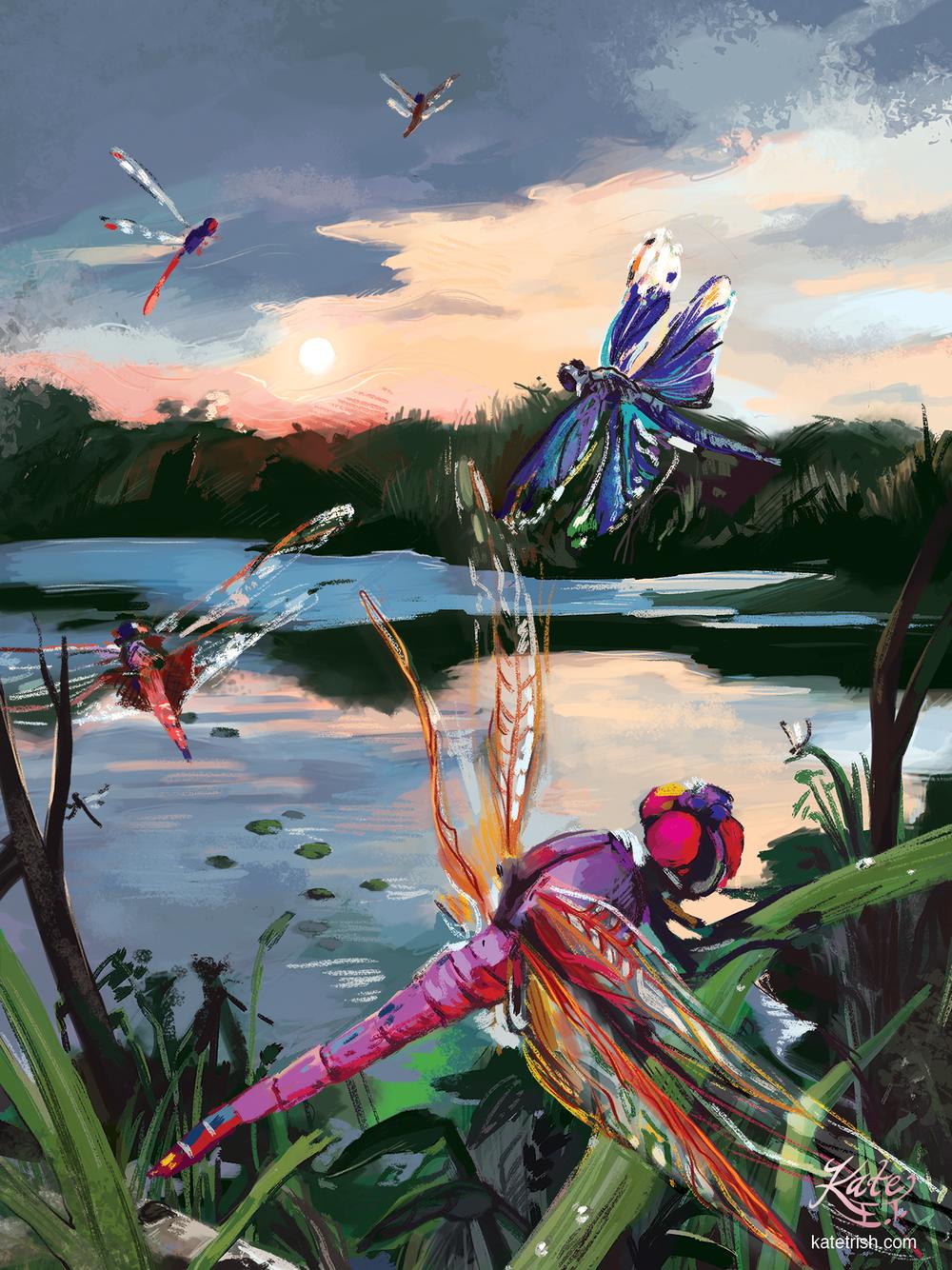 Dragonflies - Commission
