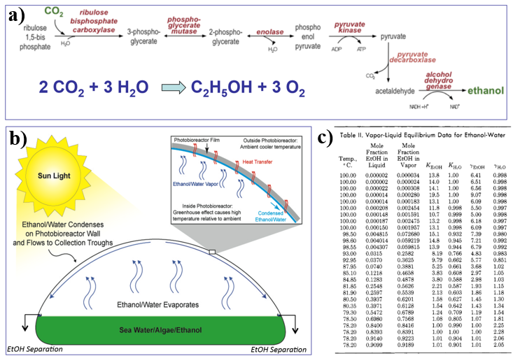 """Figure 3.    a) Metabolic pathway for the conversion of CO2 into ethanol (Algenol Biofuels, 2006). b) ethanol/water collection system (Algenol Biofuels, 2006). c) vapor-liquid equilibrium data of the binary ethanol-water system      ADDIN CSL_CITATION { """"citationItems"""" : [ { """"id"""" : """"ITEM-1"""", """"itemData"""" : { """"DOI"""" : """"10.1021/je60042a022"""", """"ISSN"""" : """"0021-9568"""", """"author"""" : [ { """"dropping-particle"""" : """""""", """"family"""" : """"Dalager"""", """"given"""" : """"Per"""", """"non-dropping-particle"""" : """""""", """"parse-names"""" : false, """"suffix"""" : """""""" } ], """"container-title"""" : """"Journal of Chemical and Engineering Data"""", """"id"""" : """"ITEM-1"""", """"issue"""" : """"3"""", """"issued"""" : { """"date-parts"""" : [ [ """"1969"""" ] ] }, """"page"""" : """"298-301"""", """"title"""" : """"Vapor-liquid equilibriums of binary systems of water with methanol and ethanol at extreme dilution of the alcohols"""", """"type"""" : """"article-journal"""", """"volume"""" : """"14"""" }, """"uris"""" : [ """"http://www.mendeley.com/documents/?uuid=2a83603f-2185-4338-90a9-0d765095c071"""" ] } ], """"mendeley"""" : { """"formattedCitation"""" : """"(Dalager, 1969)"""", """"plainTextFormattedCitation"""" : """"(Dalager, 1969)"""", """"previouslyFormattedCitation"""" : """"(Dalager, 1969)"""" }, """"properties"""" : { """"noteIndex"""" : 0 }, """"schema"""" : """"https://github.com/citation-style-language/schema/raw/master/csl-citation.json"""" }     (Dalager, 1969)        ."""