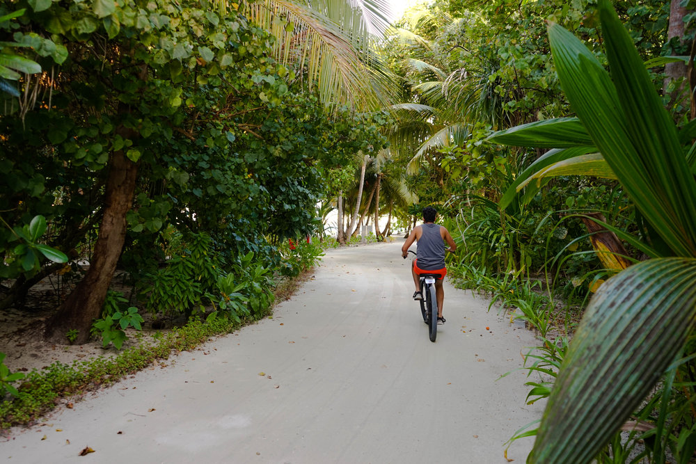 Every resort should have bikes; they were so much fun!