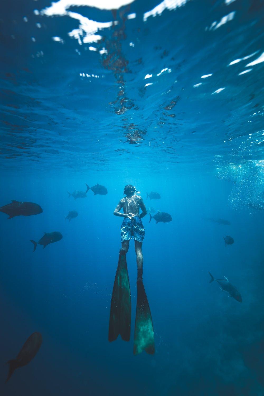 Snorkelling -