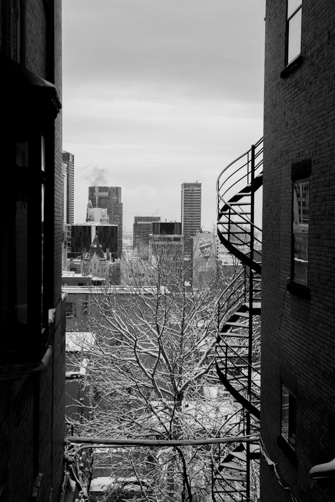 Montreal_blog_post_tall-6.jpg