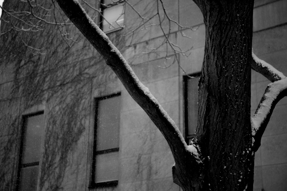 Montreal_blog_post-5.jpg